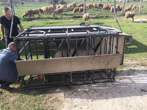 Производство на платформа за доене на овце