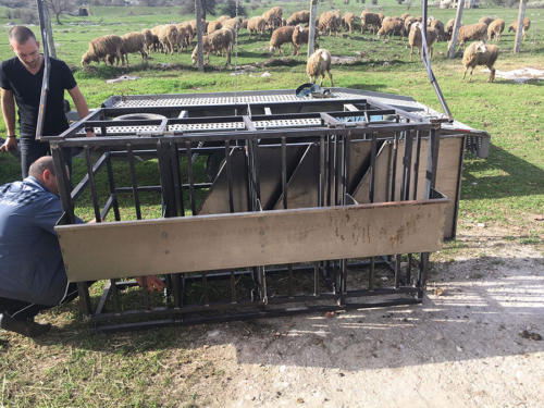 Producing a milking platform for sheep